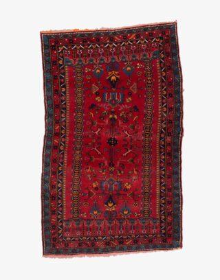 Shirvan Kazak Rug